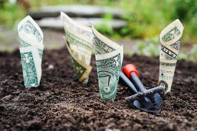 rostoucí peníze